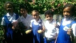 Windsor Primary