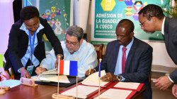 Guadeloupe Joins Oecs