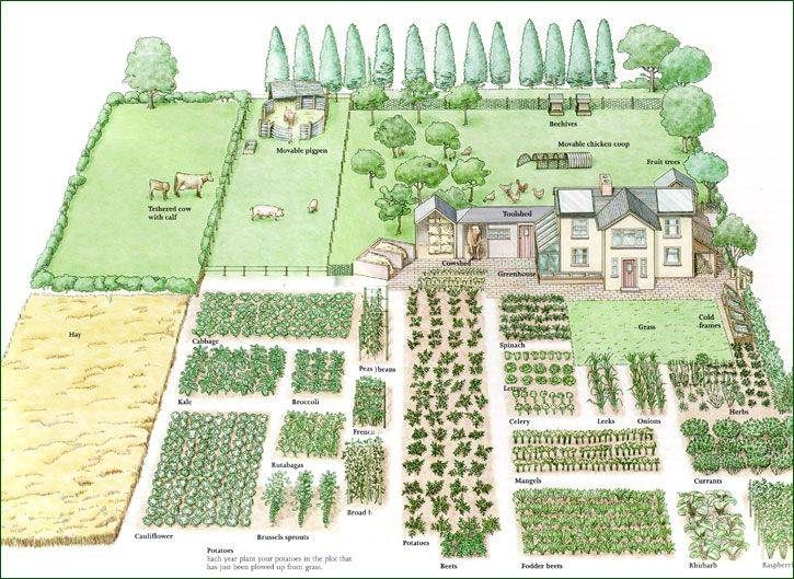 Acre Homestead Layout Garden Design Vegetable - House ... on Patio Planner id=48321