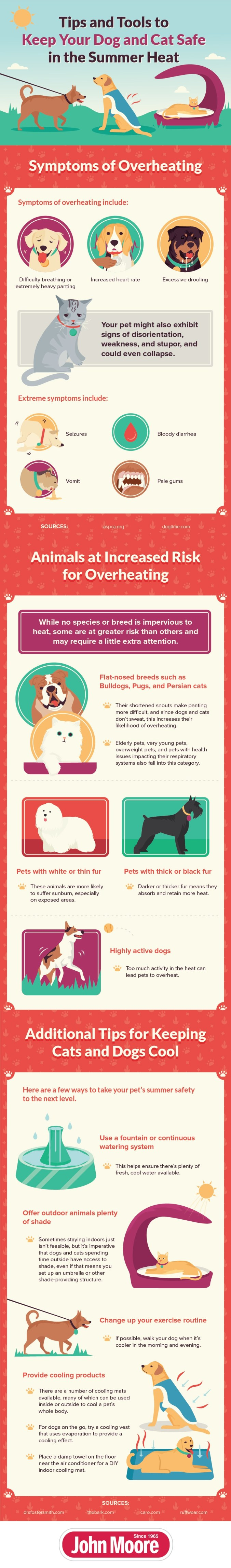 Keep-Pets-Cool-Infographic-by-John-Moore
