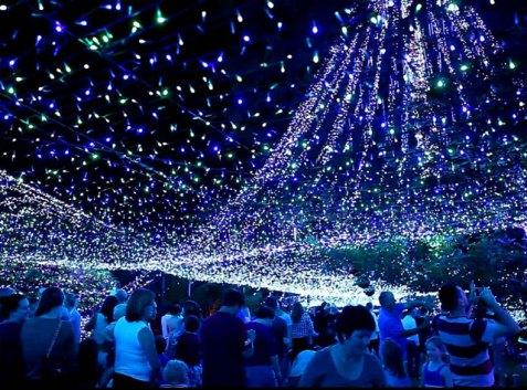 Evlerini 502 Bin Işıkla Donattılar