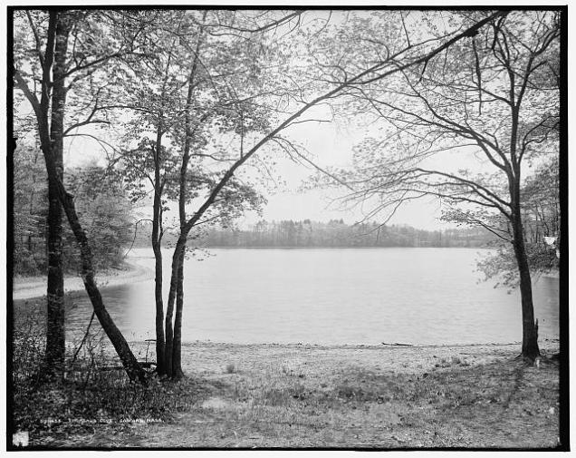 Black and white photograph of Walden Pond
