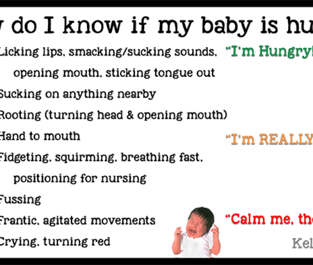 Hunger Cues When Do I Feed Baby
