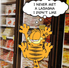 GarfieldSnaps2