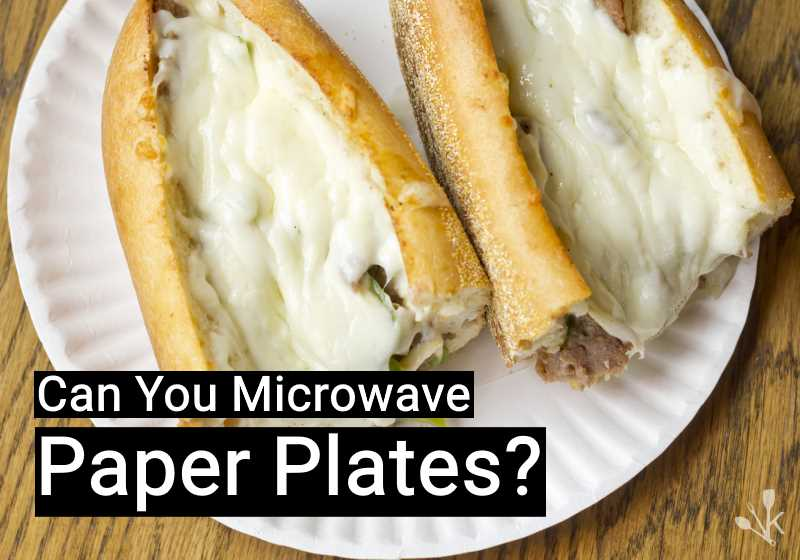 can you microwave paper plates is it