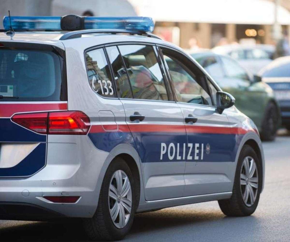 13-letna domačinka sprehajala psa in srečala bel kombi z voznikom iz Nemčije - spolnega nadlegovalca.
