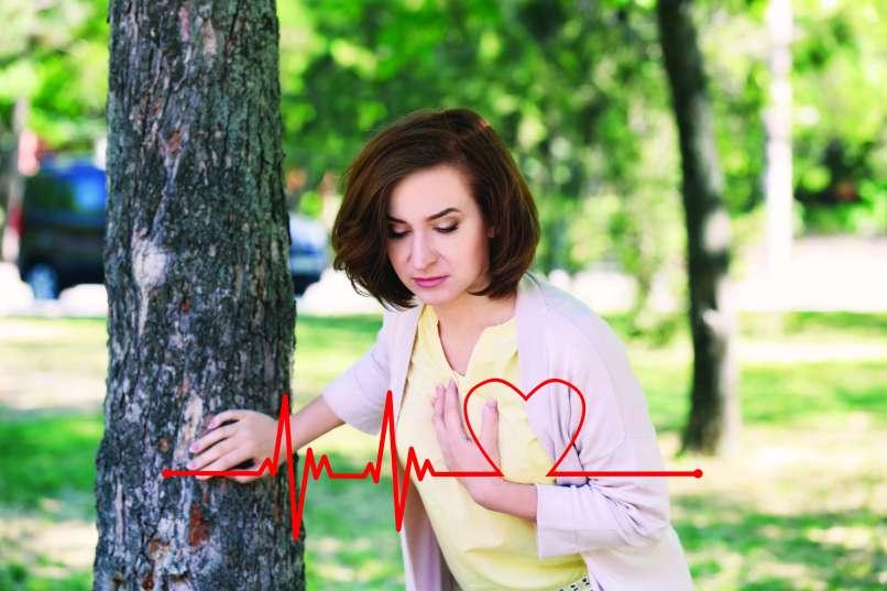 dr zarja srce2