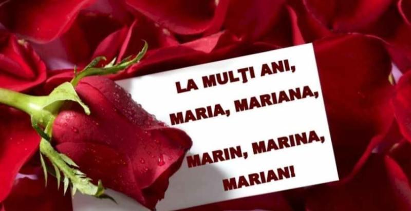 Felicitări de Sf. Maria 2021: Imagini frumoase cu La mulţi ani! - Stirile  Kanal D