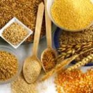 alimentos altos en hierro granos enteros