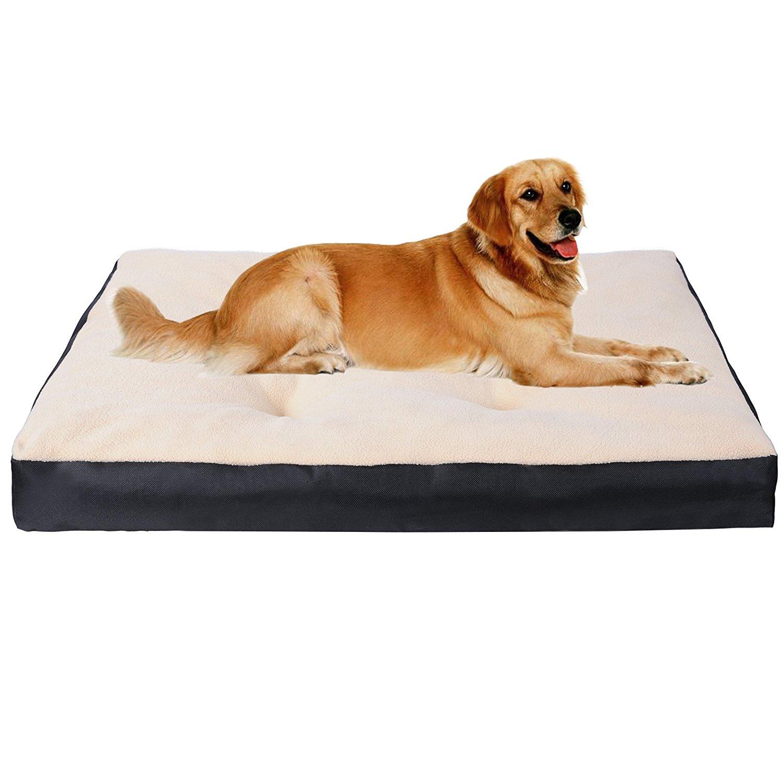 tapis pour chien pas cher enredada