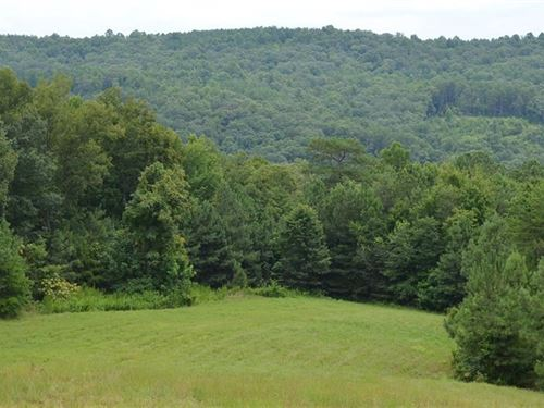 Pickens County Georgia Hunting Land for Sale : LANDFLIP