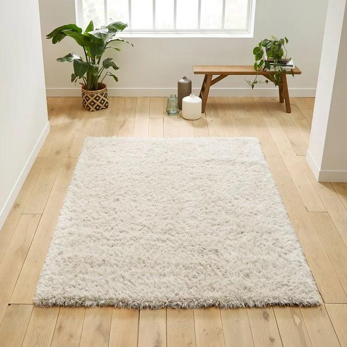 comment nettoyer un tapis a poils
