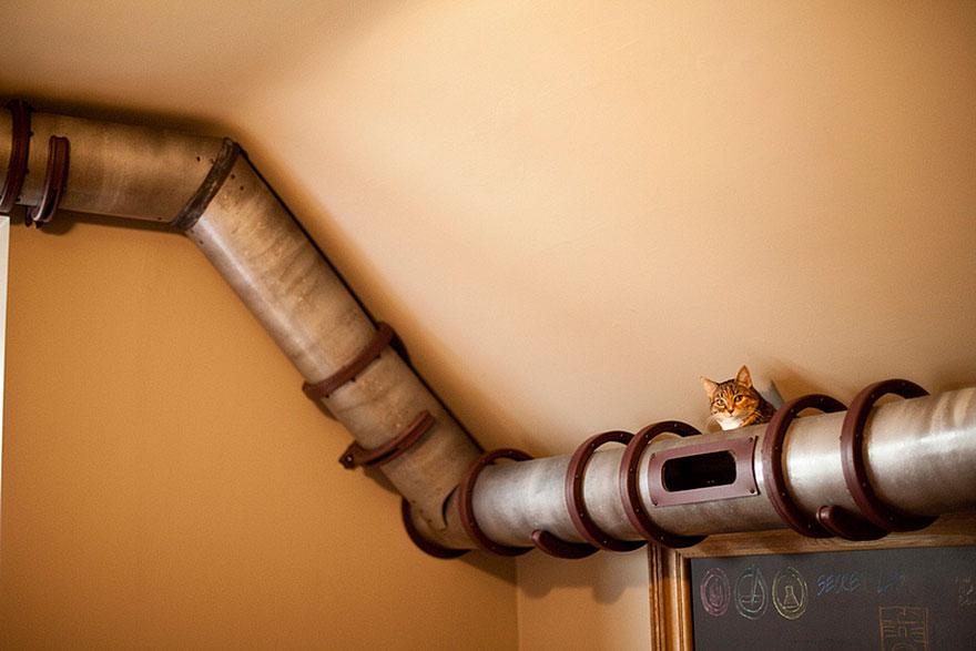 muebles gatos 10.2