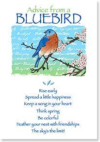 Birthday Card Birthday Advice From A Bluebird Your