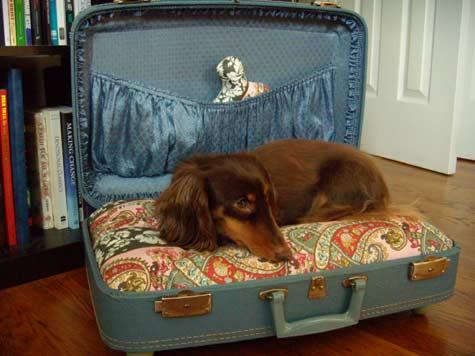 Lit pour chien valise DIY
