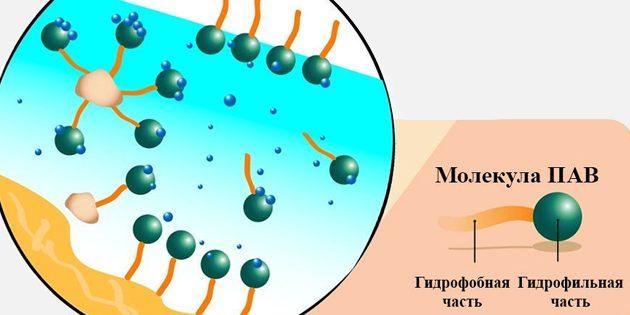 Eau micellaire: molécule de paab