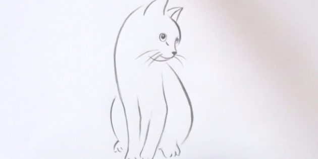 Hvordan man tegner en siddende kat i realistisk stil