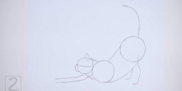 뒷발과 곡선 꼬리가 그려지는 곳을 기록하십시오.