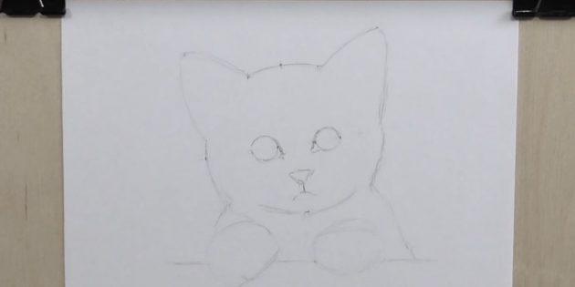 이 보조 점을 사용하여 고양이 수도꼭지의 개요를 만듭니다.