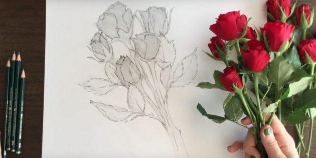 Прорисуйте очертания чашелистиков, листьев и стеблей и слегка заштрихуйте их