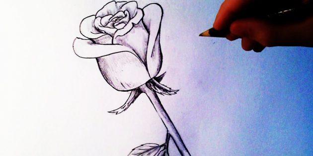 Как нарисовать полураскрытую розу карандашом