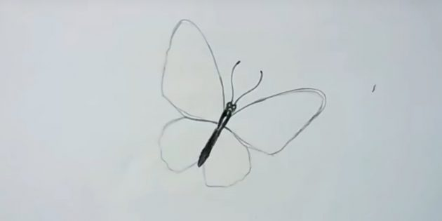 Circlave the wings and draw a butterfly mustache