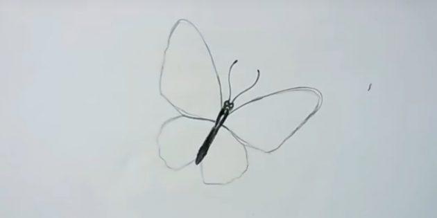 Circlave siivet ja piirrä perhonen viikset