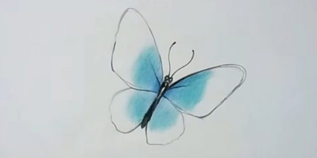 Clean the wings with turquoise color