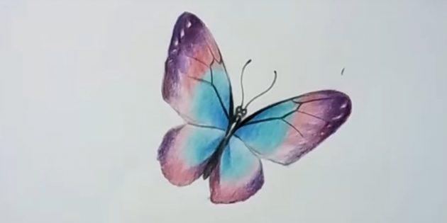 Musta lyijykynä piirtää kuvion siivet