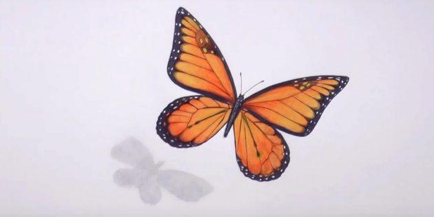 Poistaa lyijykynät ja musta pääkuvio perhonen kuvio