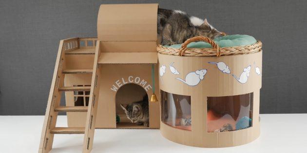 Sådan laver du et to-etagers hus til en kat ud af boksene gør det selv