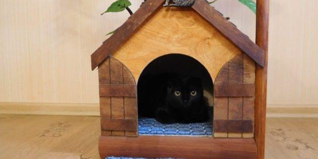 Sådan laver du et hus til en kat fra et træ gør det selv