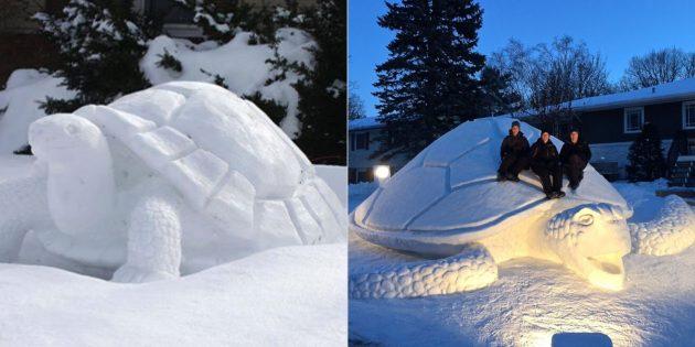 Снежные фигуры из снега: черепаха