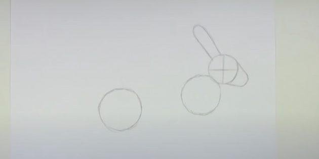 Cách vẽ thỏ rừng: Chú ý tai của bạn