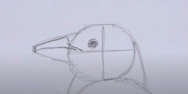 एक पेंगुइन कैसे आकर्षित करें: चोंच के ऊपर खींचें