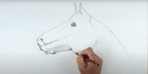 말을 그린 방법 : 눈과 콧 구멍을 짜내십시오.