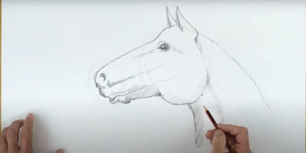 Hoe een paard te tekenen: voeg een uitbroeden toe over het oog