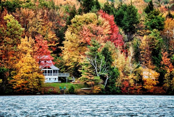 Vermont in the fall: Vermont & Harvard 2011: in the USA ...