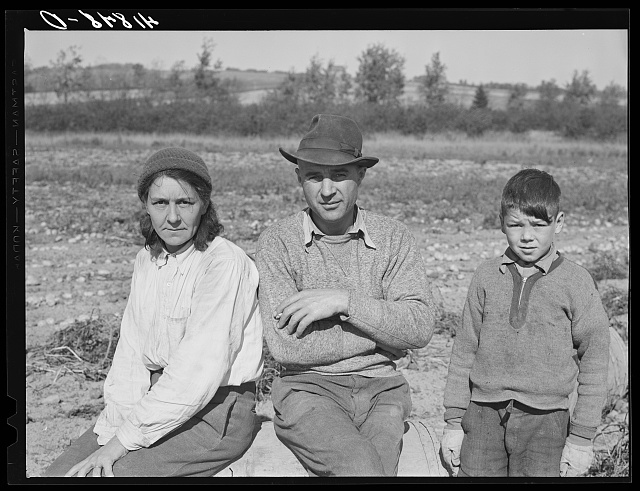 Very often entire families will become part of a large crew of potato pickers. French-Canadian mother, father and son during lunch hour in a field three miles out of Caribou, Maine