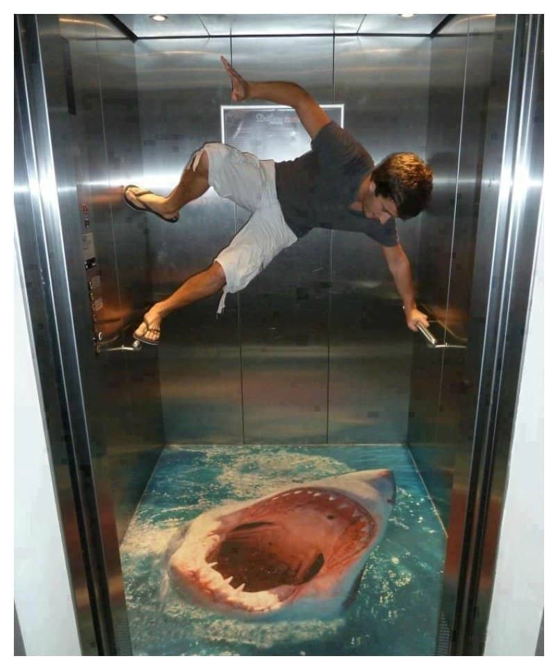 Image result for elevator with a shark