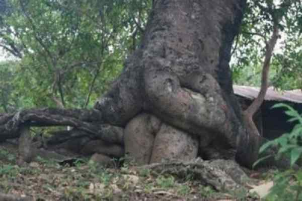 10 Pictures That Prove That You Have A Dirty Mind