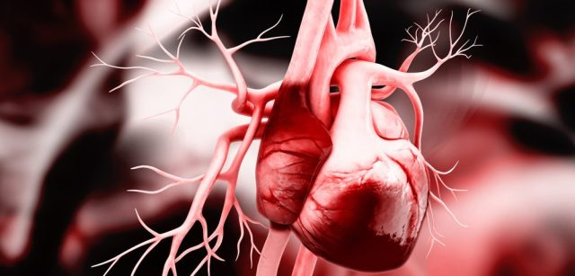 Image result for Lupus and Heart Problems