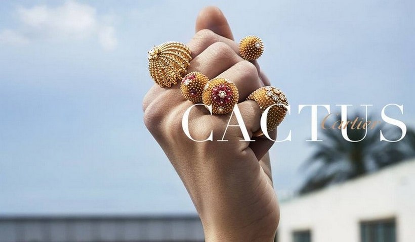 Cactus De Cartier Reveals The Sheer Beauty Of Life