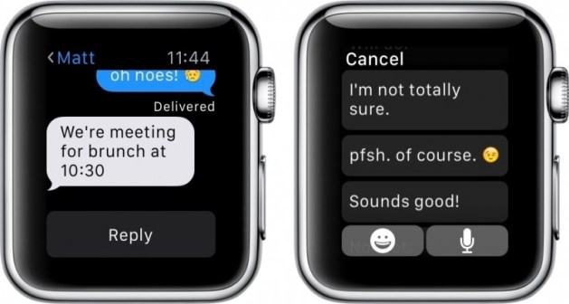 Apple Watch Default Reply how to
