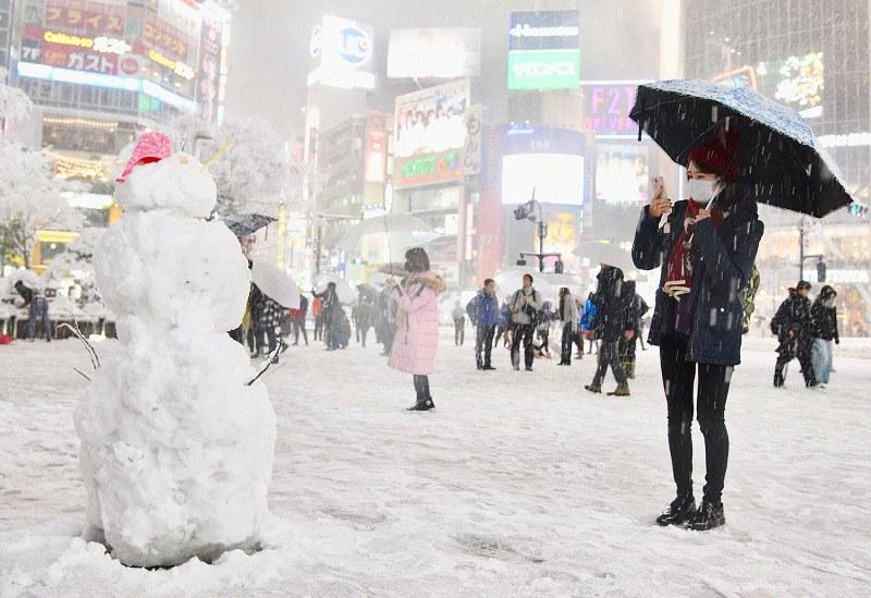 大雪:東日本に白い嵐 東京都心2年ぶりの積雪[寫真特集15/15]- 毎日新聞