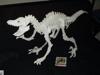 Raptor Futon1
