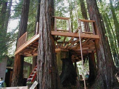 Treehouse building workshop make for Best builders workshop deck