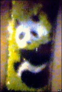 41475838 Panda203Ap