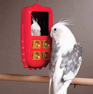 birdtoy.jpg