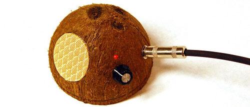 Coconut Amp Crop